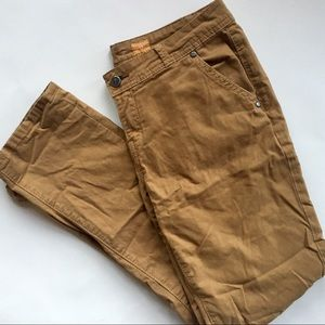 Anthropologie Pilcro Dyed Ankle Chinos Size 28